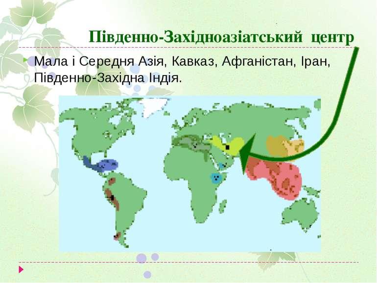 Південно-Західноазіатський центр Мала і Середня Азія, Кавказ, Афганістан, Іра...