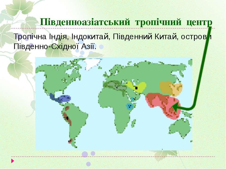 Південноазіатський тропічний центр Тропічна Індія, Індокитай, Південний Китай...