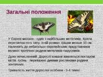 У Європі махаон - один з найбільших метеликів. Крила перетинчастого типу, їхн...
