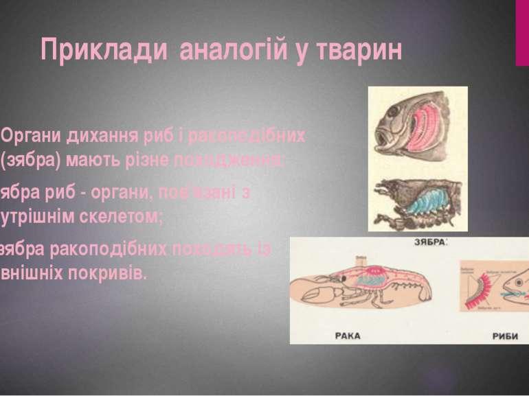 Органи дихання риб і ракоподібних (зябра) мають різне походження: - зябра риб...