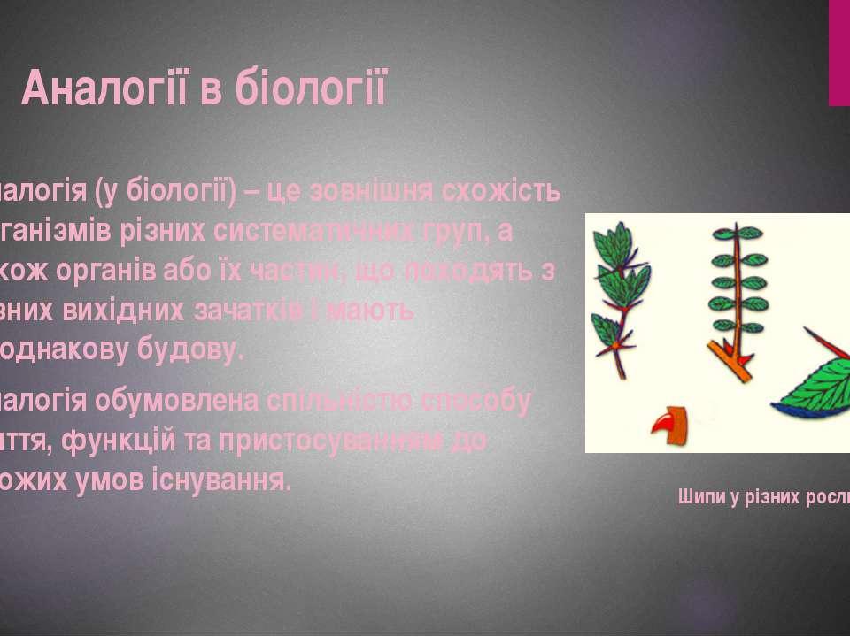 Аналогія (у біології) – це зовнішня схожість організмів різних систематичних ...