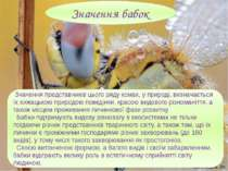 Значення представників цього ряду комах, у природі, визначається їх хижацькою...