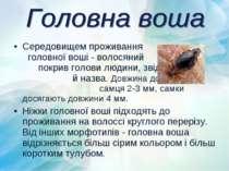 Середовищем проживання головної воші - волосяний покрив голови людини, звідки...