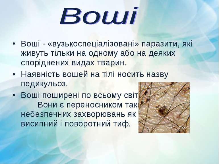 Воші - «вузькоспеціалізовані» паразити, які живуть тільки на одному або на де...