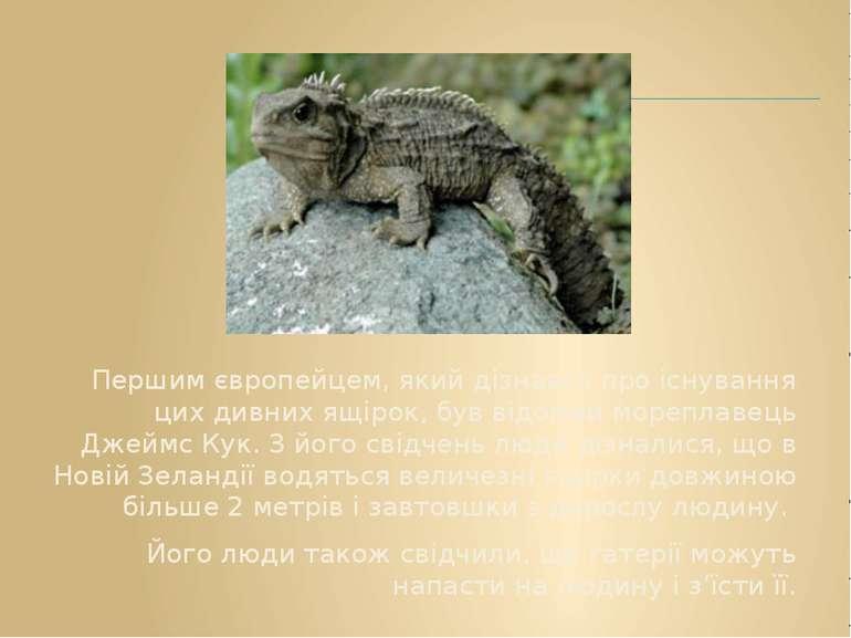 Першим європейцем, який дізнався про існування цих дивних ящірок, був відомий...