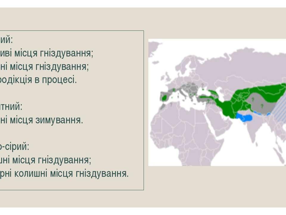 Зелений: Можливі місця гніздування; Сучасні місця гніздування; Реінтродікція ...