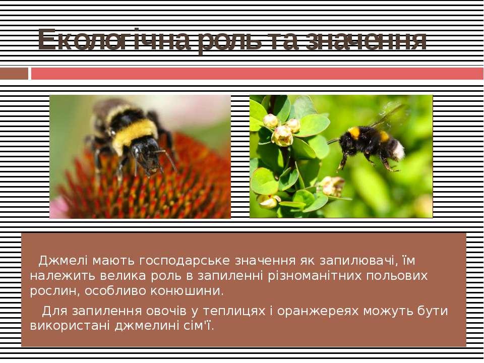 Екологічна роль та значення Джмелі мають господарське значення як запилювачі,...