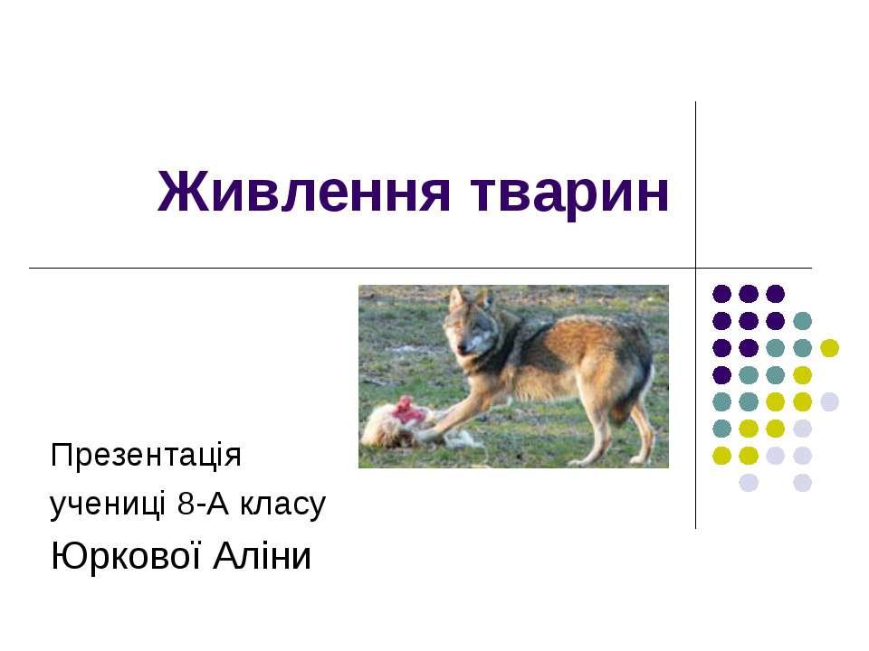 Живлення тварин Презентація учениці 8-А класу Юркової Аліни