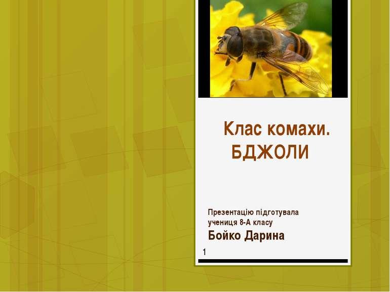 Клас комахи. БДЖОЛИ Презентацію підготувала учениця 8-А класу Бойко Дарина