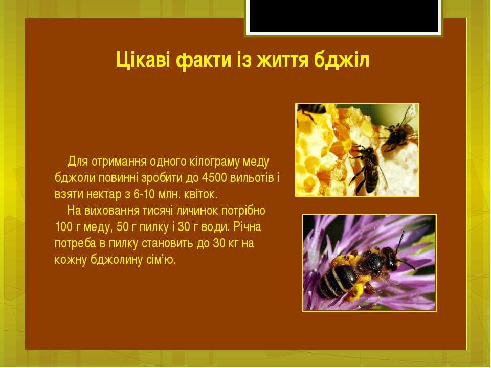 Для отримання одного кілограму меду бджоли повинні зробити до 4500 вильотів і...
