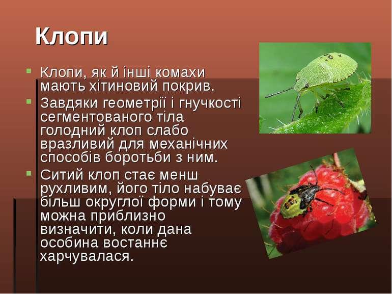 Клопи, як й інші комахи мають хітиновий покрив. Завдяки геометрії і гнучкості...