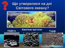 Що утворилося на дні Світового океану? Нафта Кам'яне вугілля Торф