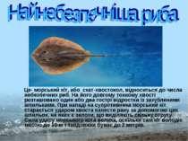 Це- морський кіт, або скат-хвостокол, відноситься до числа небезпечних риб. Н...
