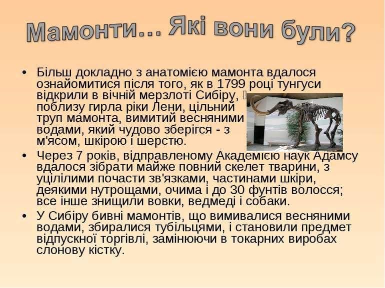 Більш докладно з анатомією мамонта вдалося ознайомитися після того, як в 1799...