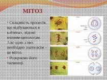 МІТОЗ Складність процесів, що відбуваються в клітинах, відомі вченим-цитолога...