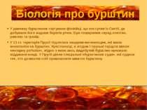 У давнину бурштином торгували фінікійці, що поступав із Скитії, де добували й...