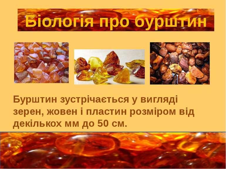 Бурштин зустрічається у вигляді зерен, жовен і пластин розміром від декількох...