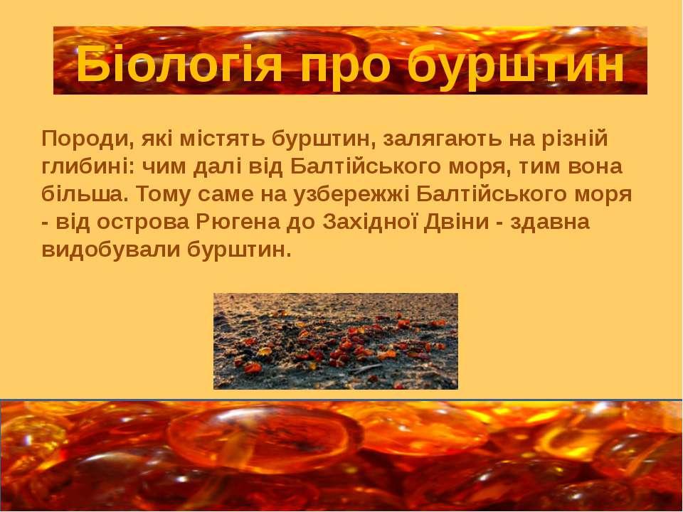 Породи, які містять бурштин, залягають на різній глибині: чим далі від Балтій...