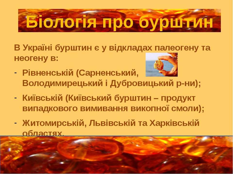 В Україні бурштин є у відкладах палеогену та неогену в: Рівненській (Сарненсь...