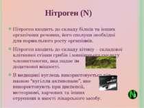 Нітроген входить до складу білків та інших органічних речовин, його сполуки н...