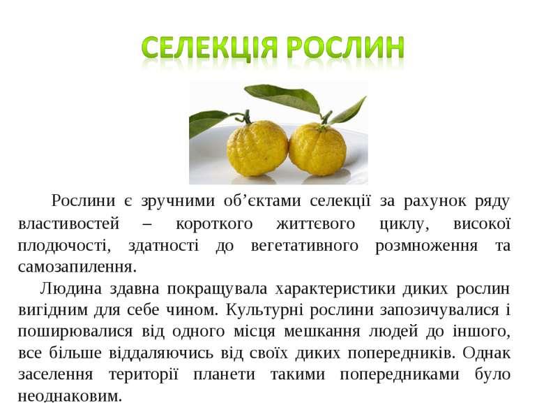 Рослини є зручними об'єктами селекції за рахунок ряду властивостей – коротког...