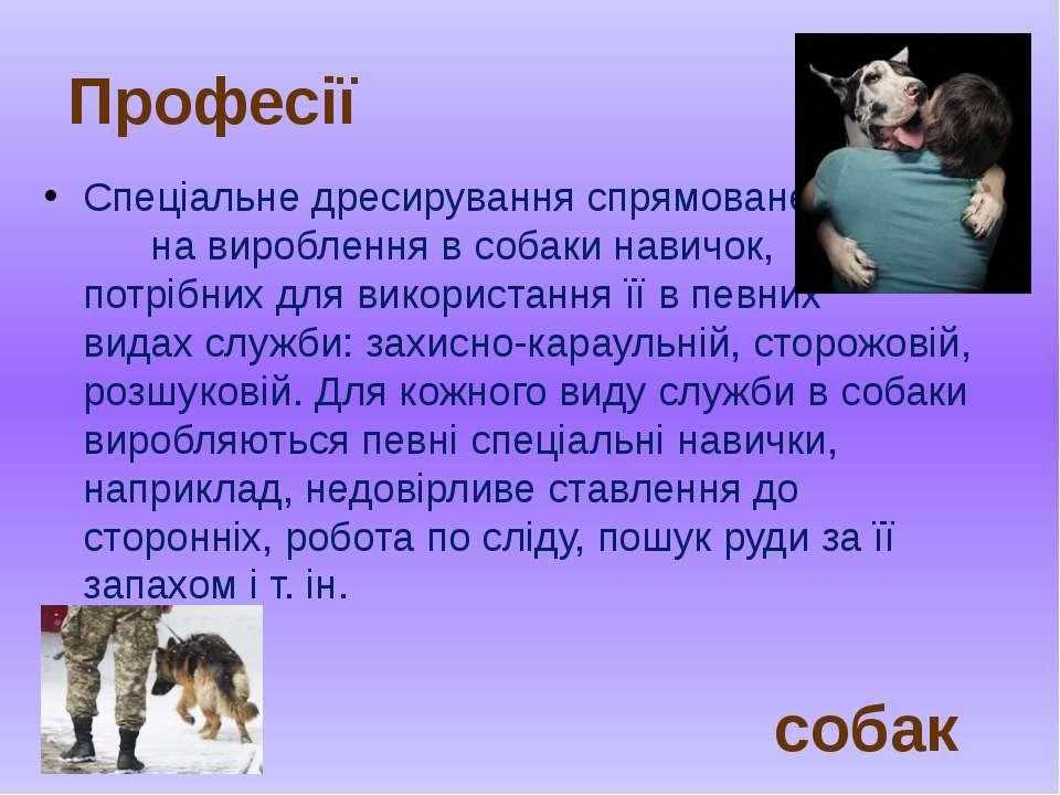 Спеціальне дресирування спрямоване на вироблення в собаки навичок, потрібних ...