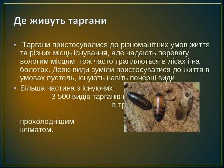 Таргани пристосувалися до різноманітних умов життя та різних місць існування...