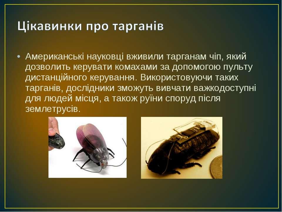 Американські науковці вживили тарганам чіп, який дозволить керувати комахами ...