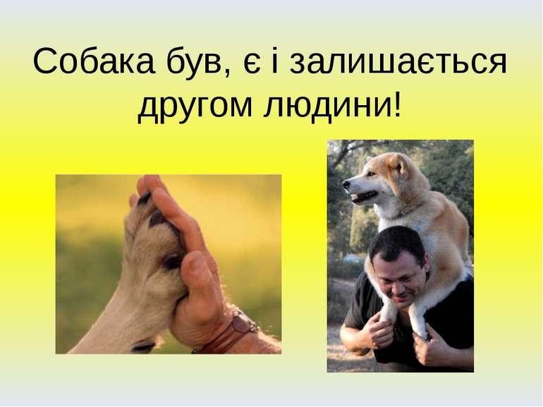 Собака був, є і залишається другом людини!