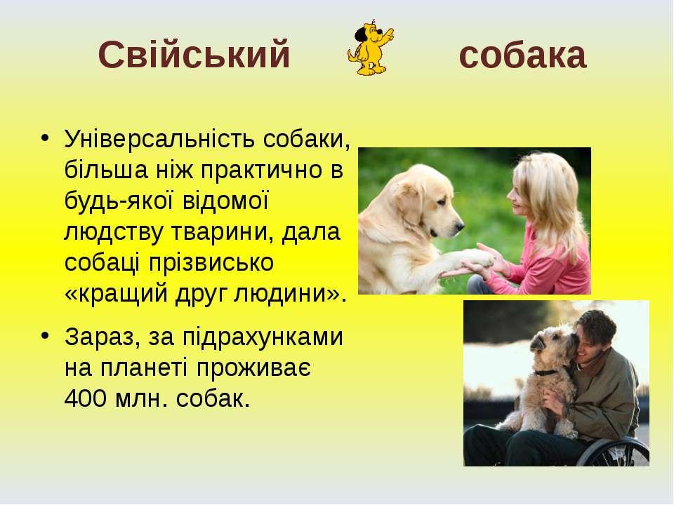 Універсальність собаки, більша ніж практично в будь-якої відомої людству твар...