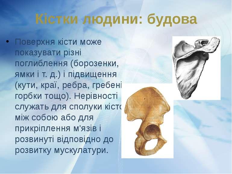 Поверхня кісти може показувати різні поглиблення (борозенки, ямки і т. д.) і ...