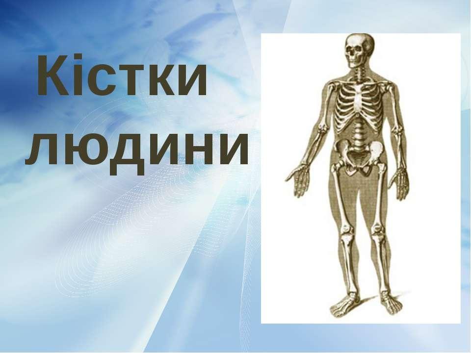Кістки людини