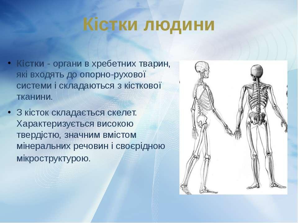 Кістки- органи в хребетних тварин, які входять до опорно-рухової системи і с...