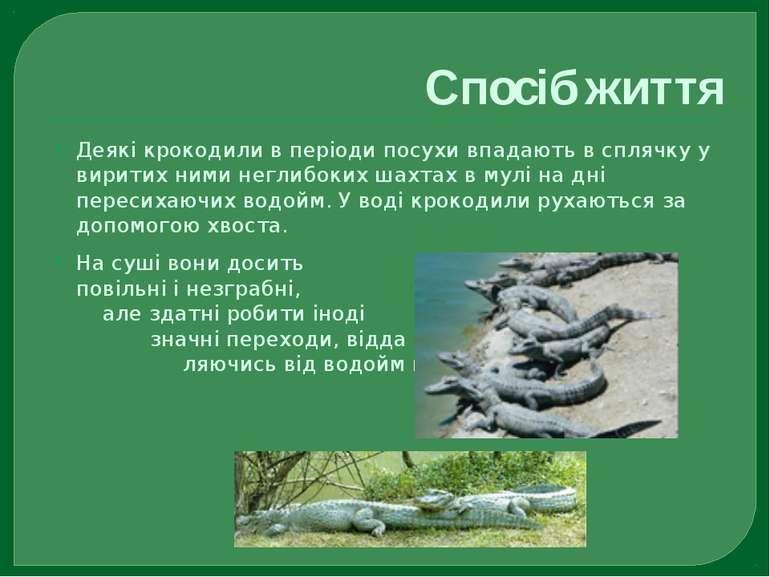 Спосіб життя Деякі крокодили в періоди посухи впадають в сплячку у виритих ни...