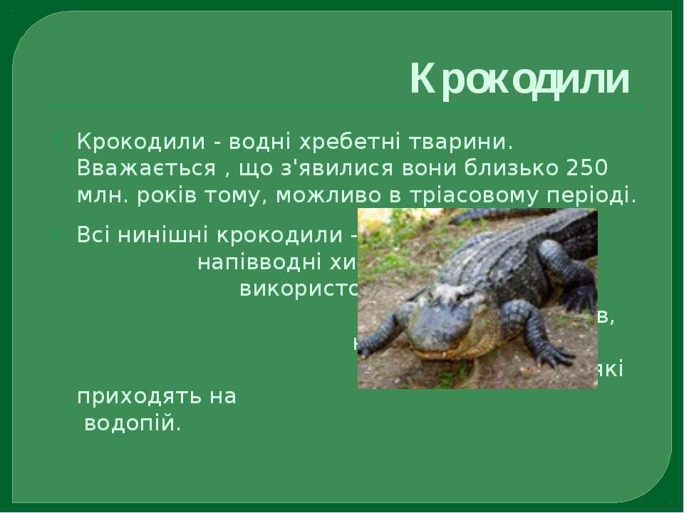 Крокодили Крокодили - водні хребетні тварини. Вважається , що з'явилися вони ...