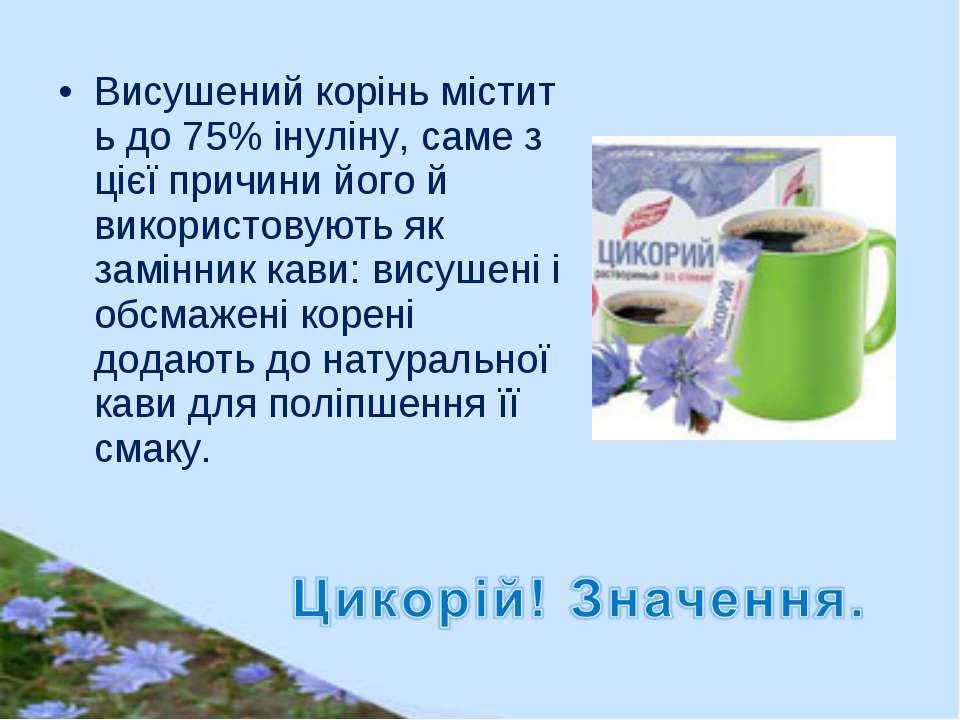 Висушенийкоріньмістить до75%інуліну, саме з цієї причинийого й використо...
