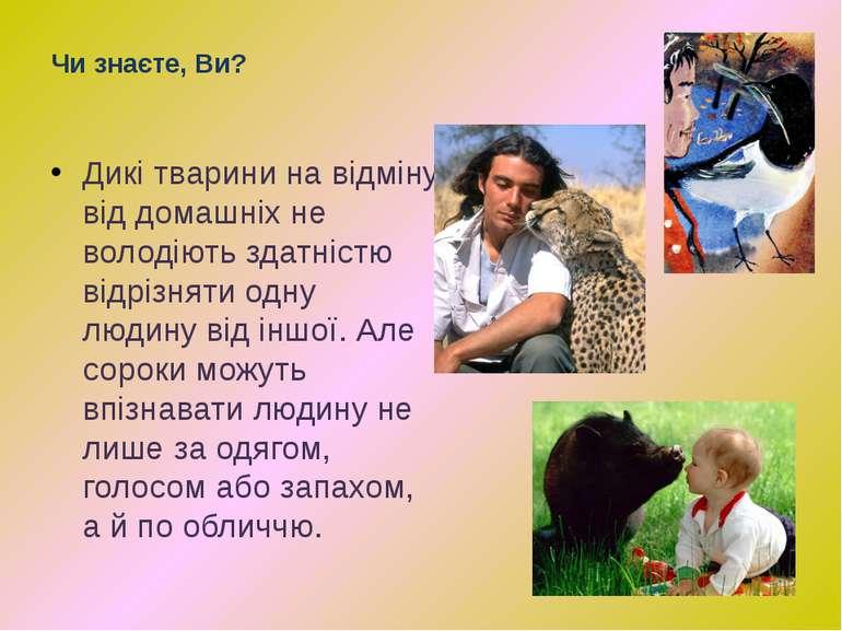 Чи знаєте, Ви? Дикі тварини на відміну від домашніх не володіють здатністю ві...