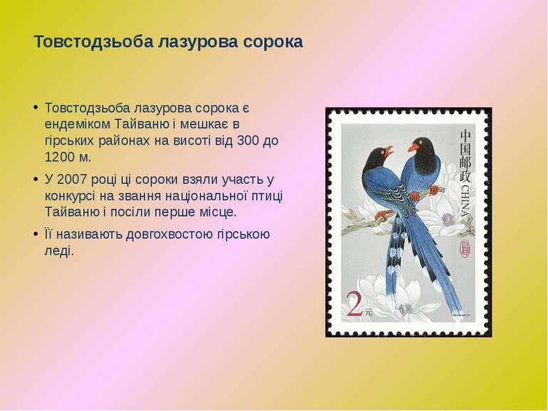 Товстодзьоба лазурова сорока є ендеміком Тайваню і мешкає в гірських районах ...