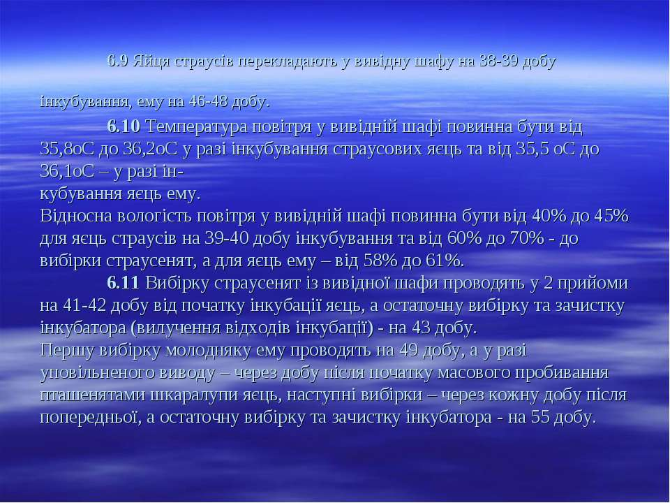 6.9 Яйця страусів перекладають у вивідну шафу на 38-39 добу інкубування, ему ...
