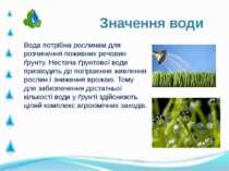 Вода потрібна рослинам для розчинення поживних речовин ґрунту. Нестача ґрунто...