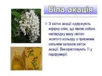 З квіток акації одержують ефірну олію, що являє собою напіврідку масу світло-...