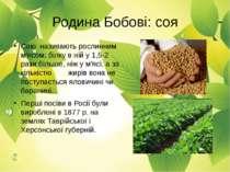 Сою називають рослинним м'ясом: білку в ній у 1,5-2 рази більше, ніж у м'ясі,...