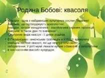 Квасоля-одна з найдавніших культурних рослин Південної Америки, що підтверд...