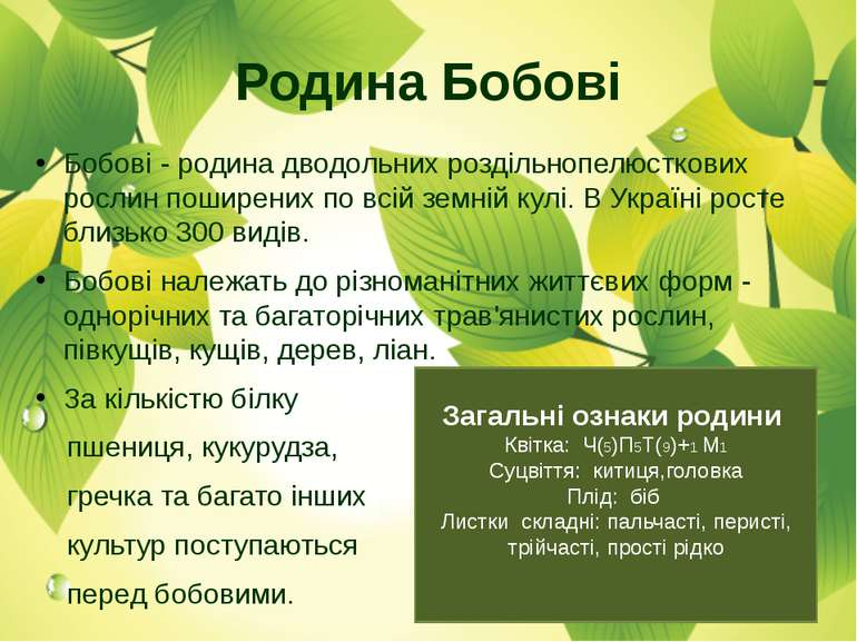 Родина Бобові Бобові - родина дводольних роздільнопелюсткових рослин поширени...