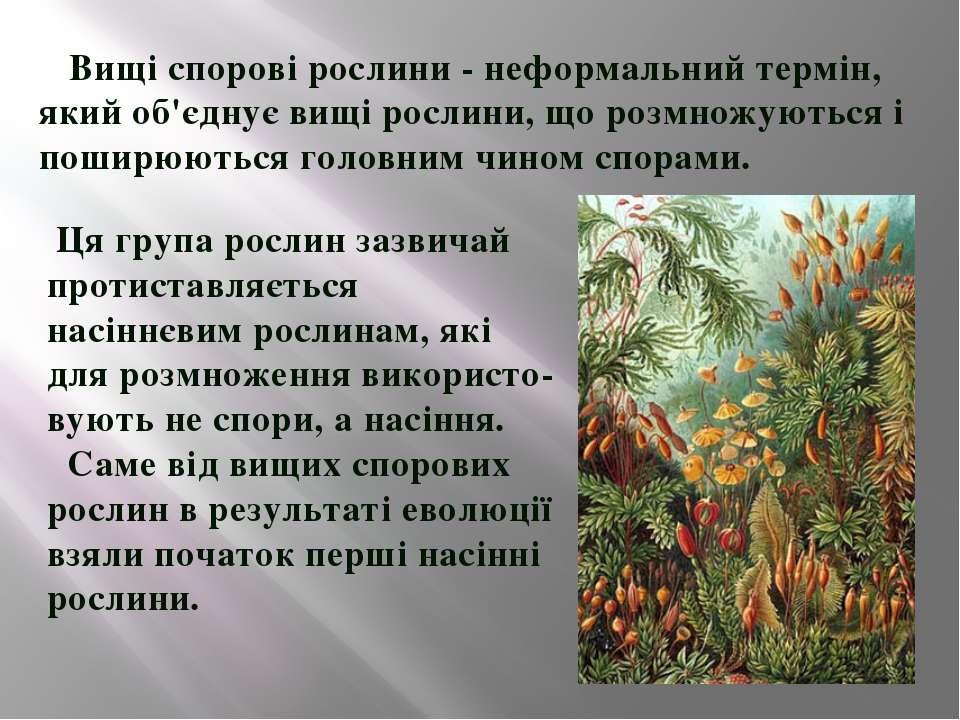 Вищі спорові рослини