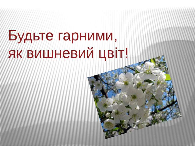 Будьте гарними, як вишневий цвіт!