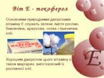 Основними природними джерелами вітаміну E служать зелене листя рослин, бавовн...