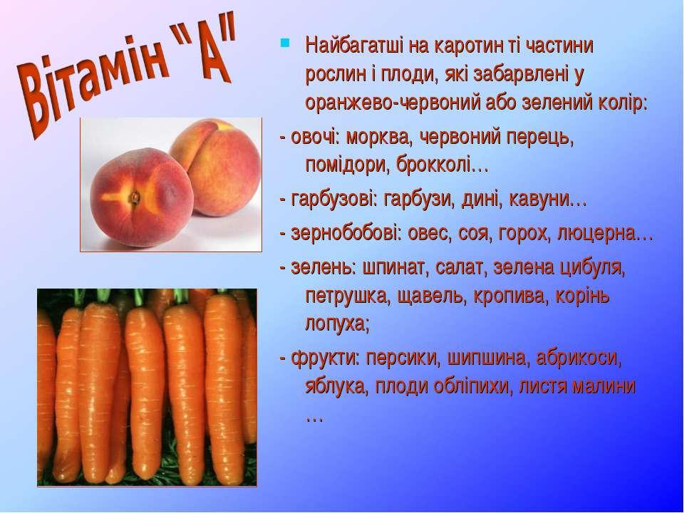 Найбагатші на каротин ті частини рослин і плоди, які забарвлені у оранжево-че...