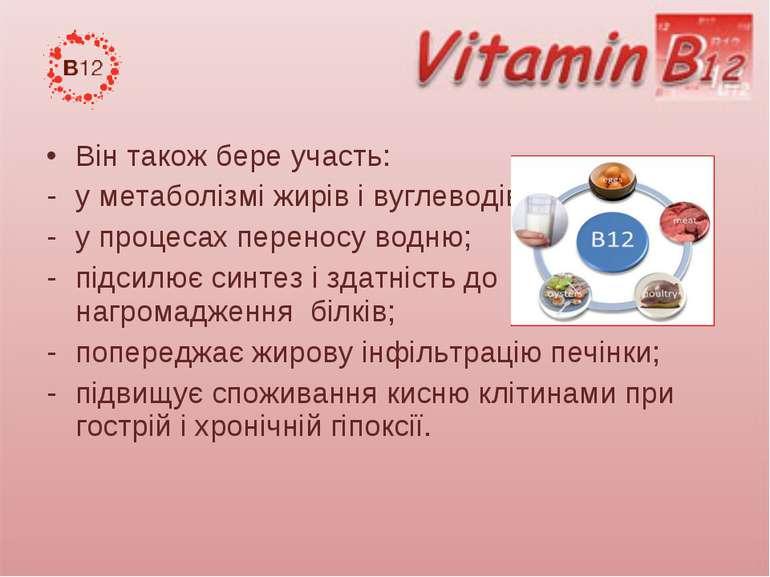 Вінтакожбере участь: у метаболізміжирів і вуглеводів; у процесахпереносу...