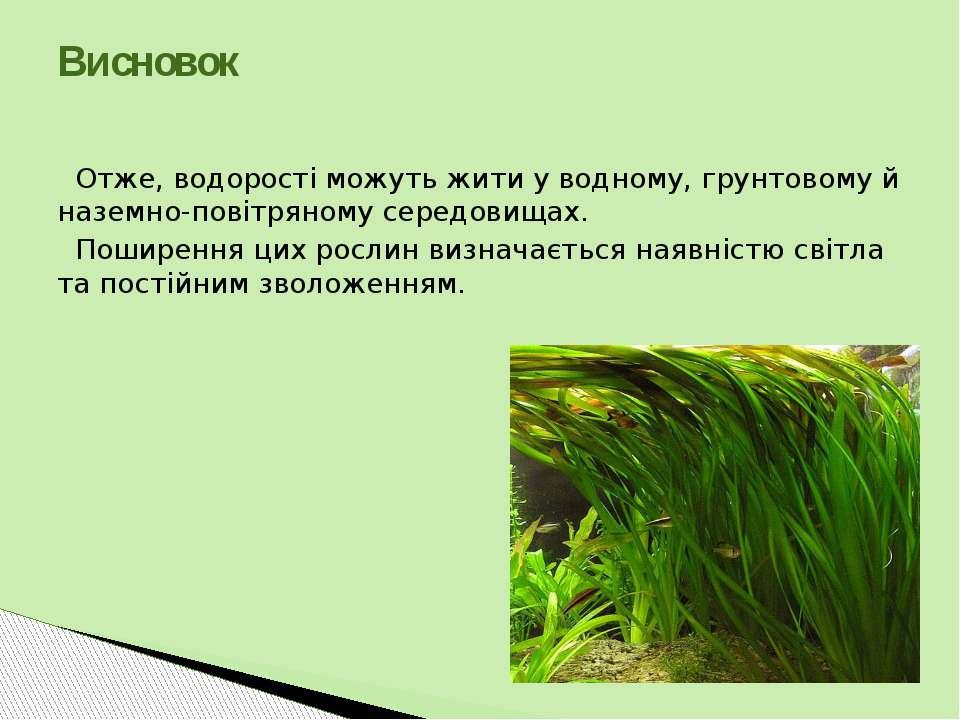 Отже, водорості можуть жити у водному, грунтовому й наземно-повітряному серед...